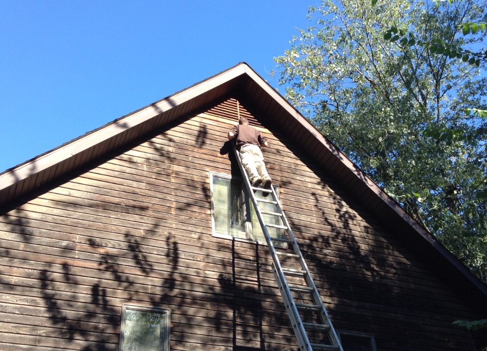 Wildlife specialist at the top of a ladder setting up bat deterrents on an attic gable vent